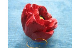 Blütenknopf roter Mohn H123-50A54_1
